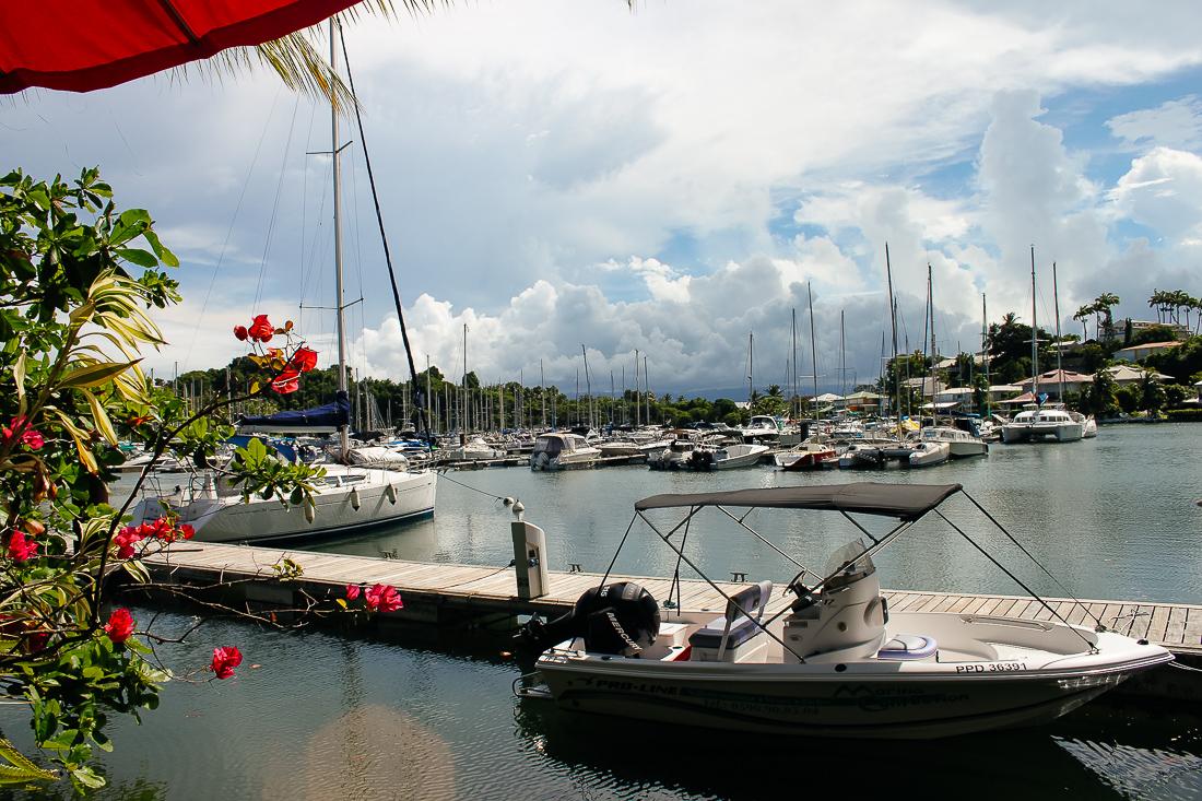 carnet-de-voyage-guadeloupe-6476