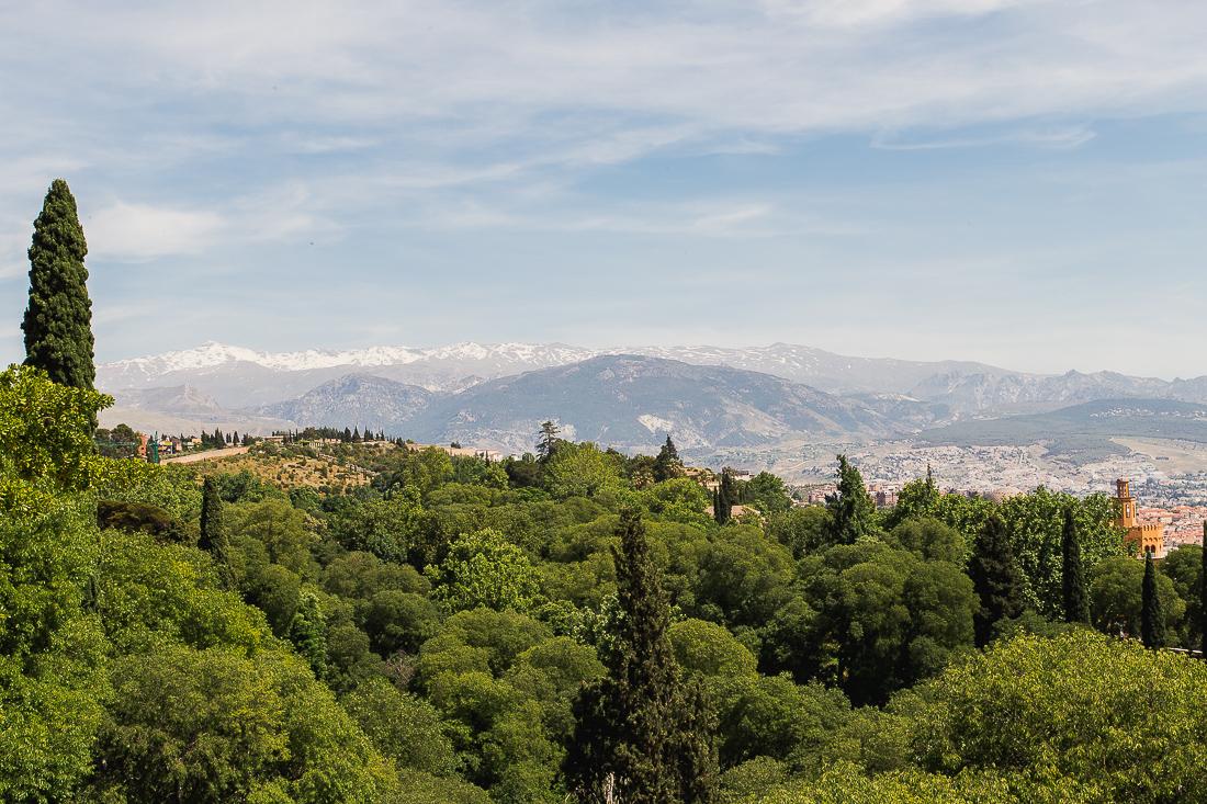 sliceofcactus-carnet-de-voyage-andalousie-alhambra-van-trip-0525
