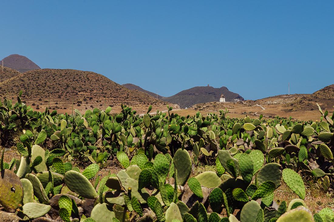 sliceofcactus-carnet-de-voyage-andalousie-cabo-de-gata-van-trip-0764