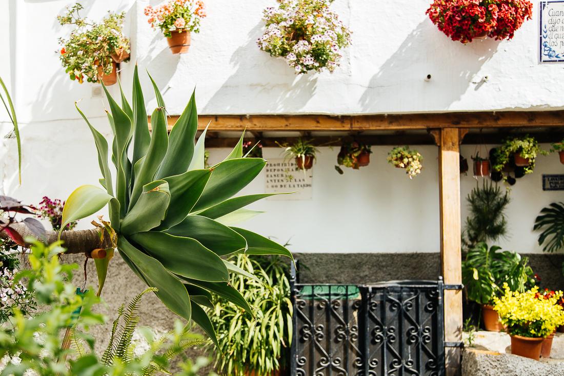 sliceofcactus-carnet-de-voyage-andalousie-van-trip-0494