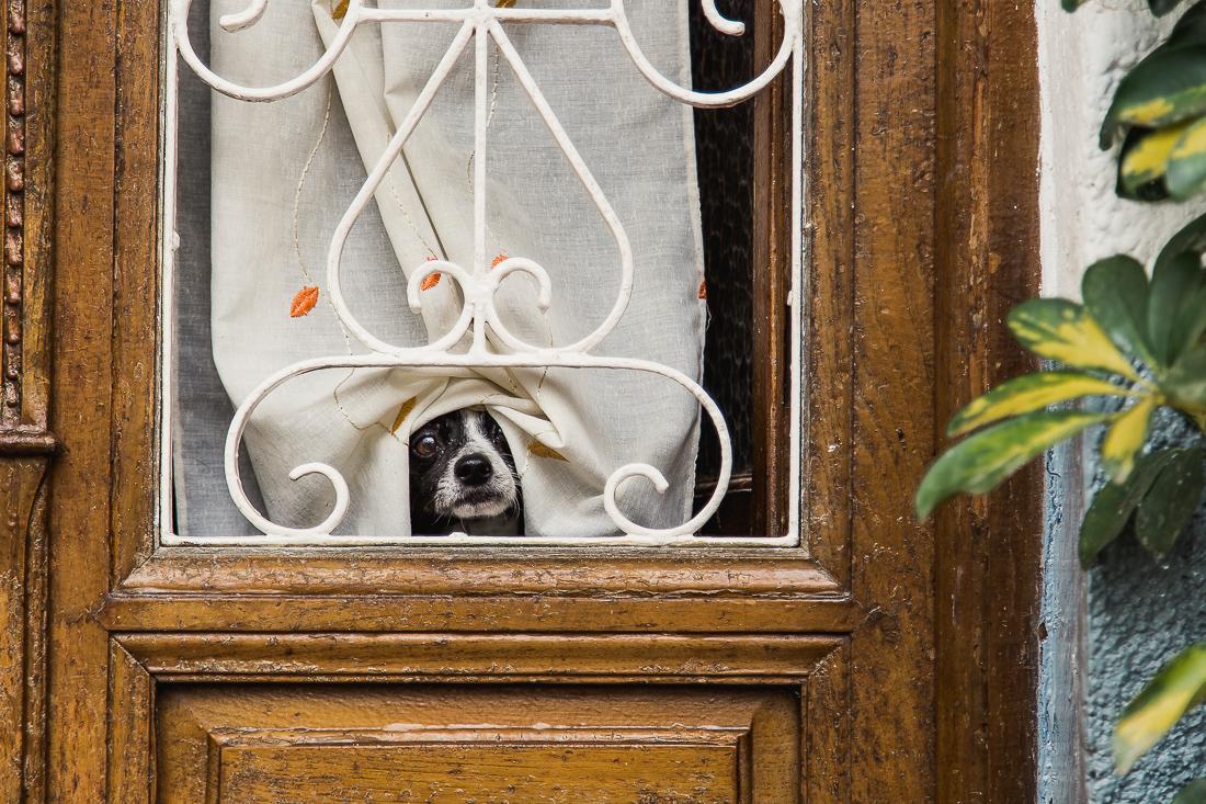 sliceofcactus-carnet-de-voyage-andalousie-van-trip-0497