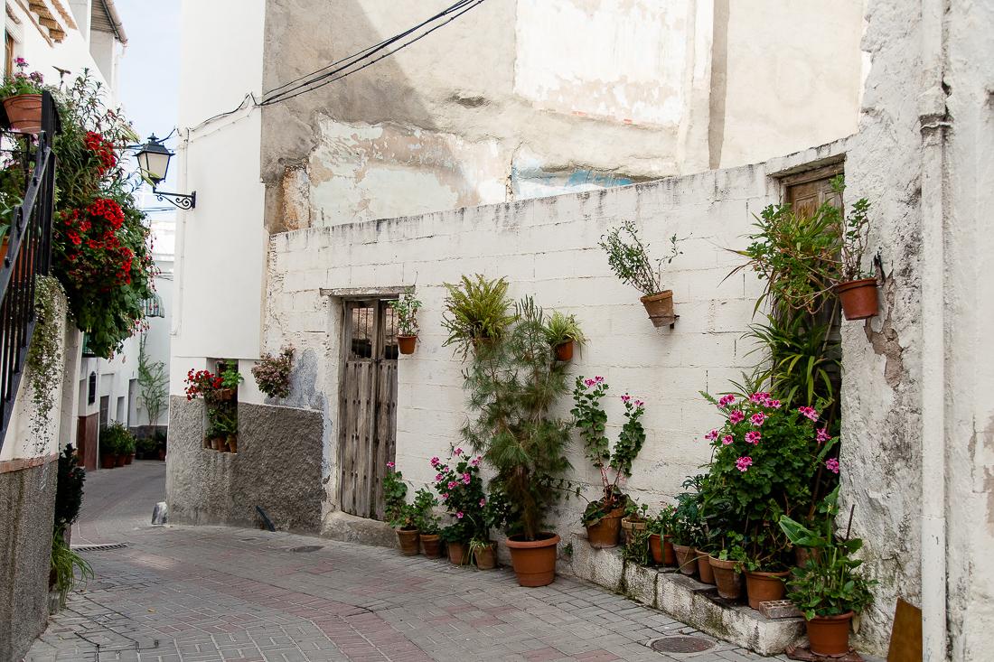 sliceofcactus-carnet-de-voyage-andalousie-van-trip-0502