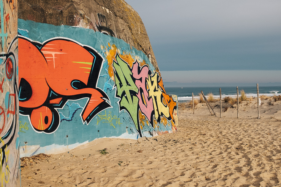 sliceofcactus-plage-les-casernes-landes-4458