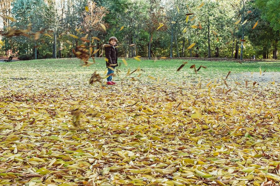 sliceofcactus-automne-parc-bordelais-25