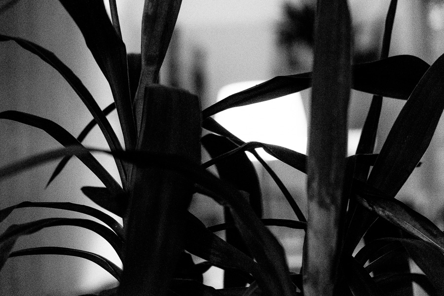 sliceofcactus-platine-vinyle-dub-6