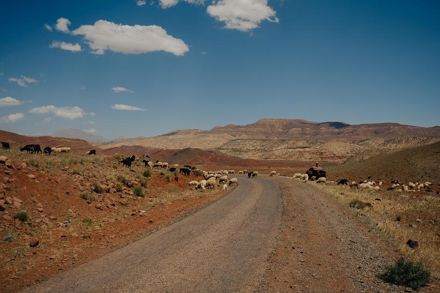 Sur la route du col de Tizi N'Tichka et visite de la kasbah de Telouet
